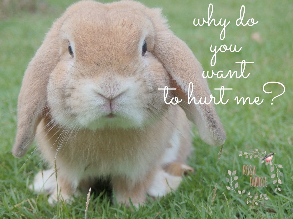 Who else desires to be cruelty free?