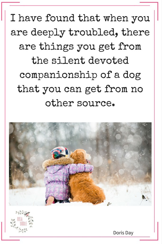 Are You Enough Of A Companion For Your Dog?