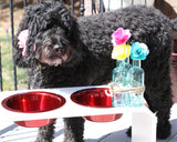 12 inch Elevated Dog Feeders with two 2 Quart Bowls