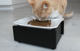 Whisker Stress Free Cat Feeder