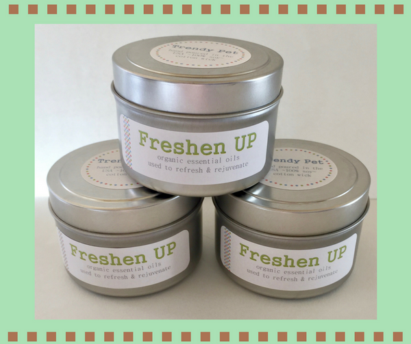 Freshen Up Aromatherapy Candles- 4 oz Tin