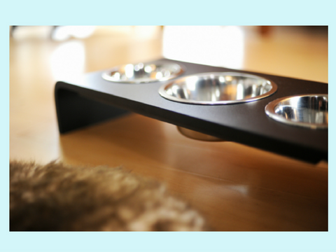 6 Inch Elevated Triple Bowl Elevated Feeder Perfect for the TWO Pet Family!