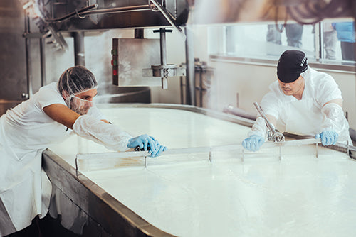 Cheesemaking - cutting the curd