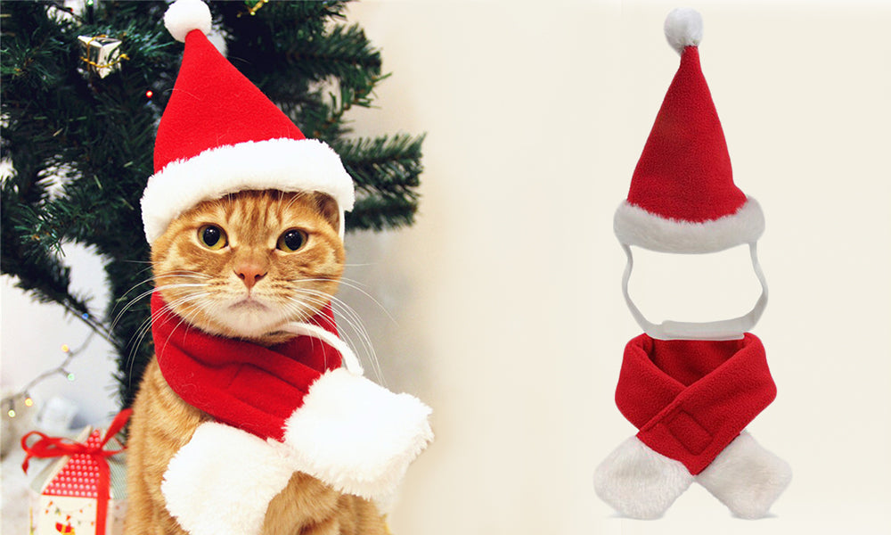 Pet Santa Hat and Scarf
