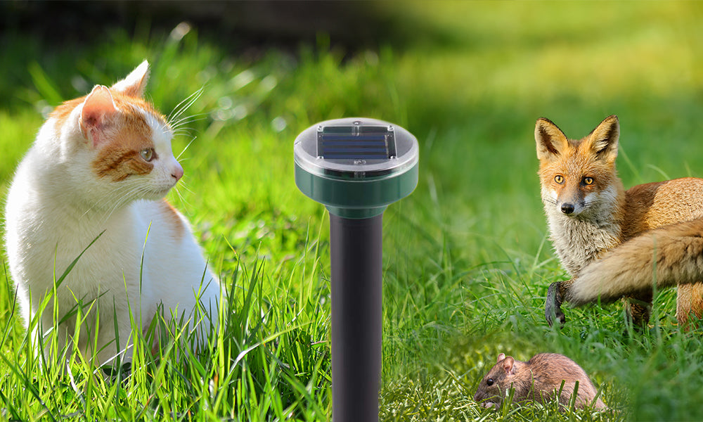 Solar Animal And Insect Repellent