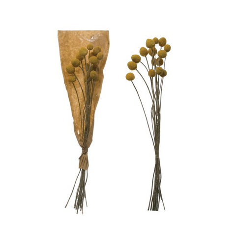 Dried Natural Bunch, Yellow