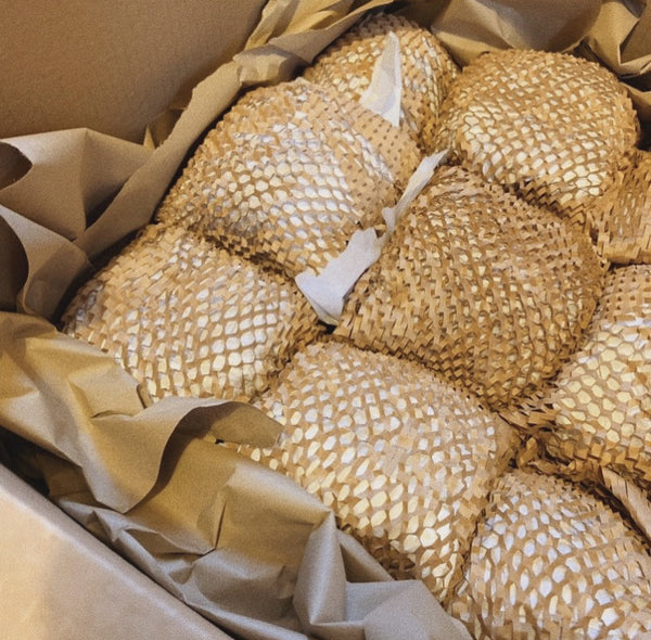 pots wrapped in recyclable packaging materials