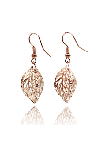 delicate sparkling crystal earrings