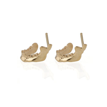 Mandible Stud Earrings Yellow Gold | Sarah & Sebastian