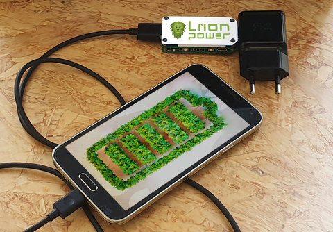 The Liion Battery Life Extender