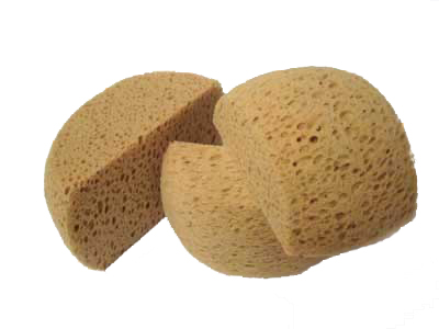 Hydra Dome Shaped Sponge Large