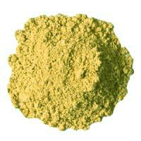 Chrysanthos Ultra Stain Lime