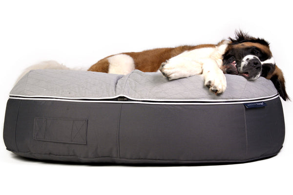 Pet Lounge Dog Beds