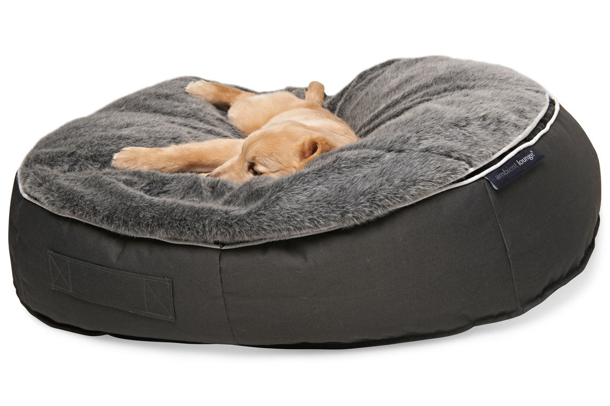 Picture of: Medium Dog Bed Designer Pet Bed Pet Lounge Dog Bed Singapore Ambient Lounge Singapore Southeast Asia