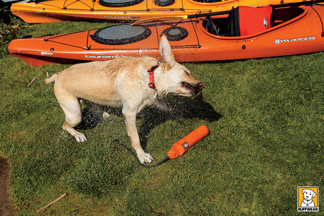 Lunker™ - Interactive Floating Dog Toy