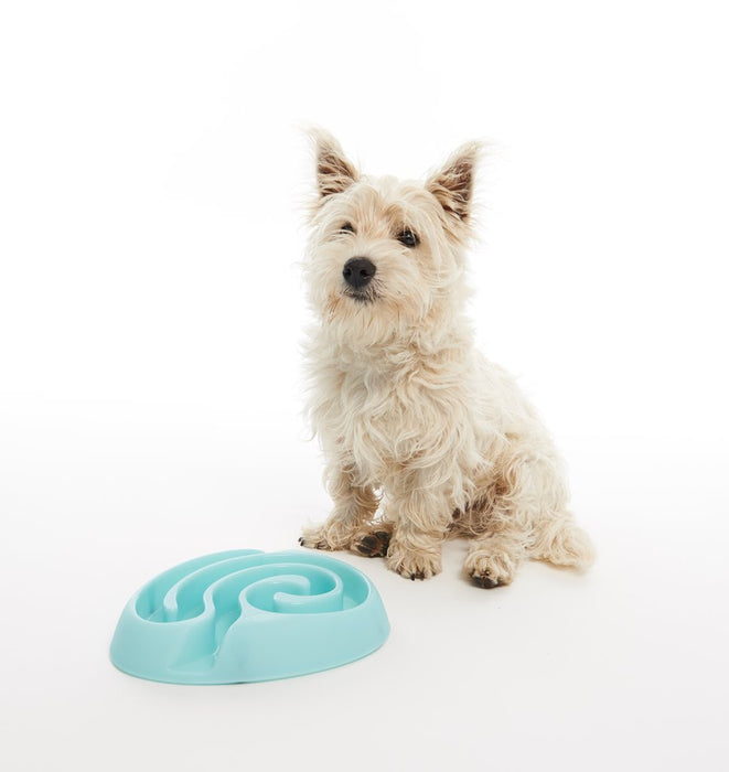 Buster Dog Maze Slow Feeder Bowl (Blue)