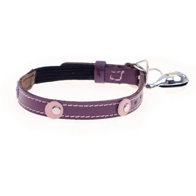 Moet Purple Cat Collar