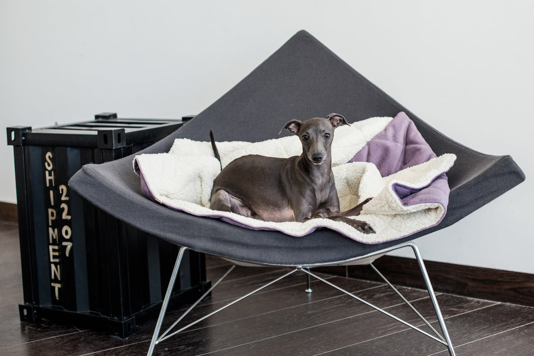 Dreamy Den Dog Bed (Nero)