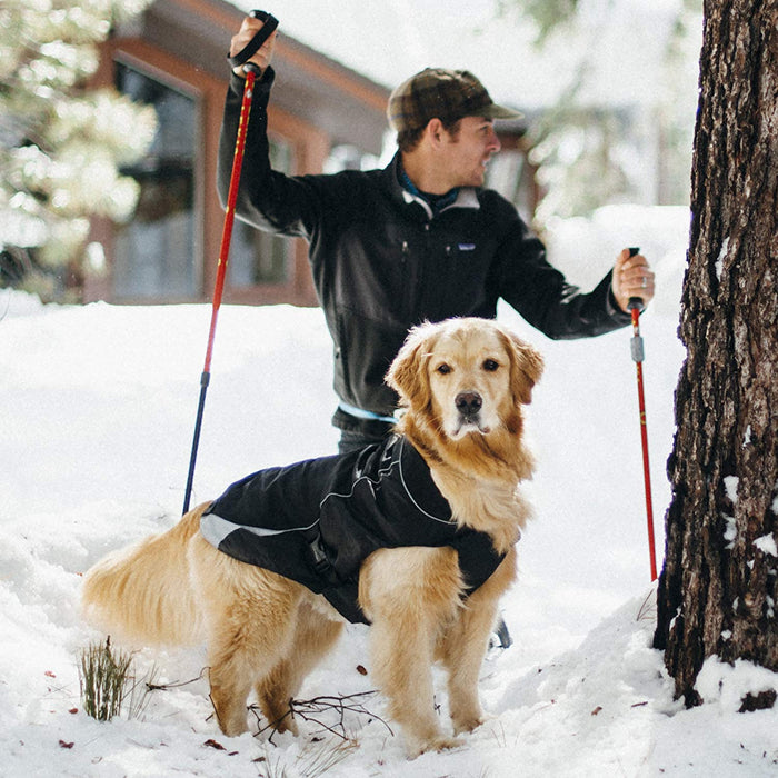 North Country Insulated & Waterproof Dog Coat (Black)