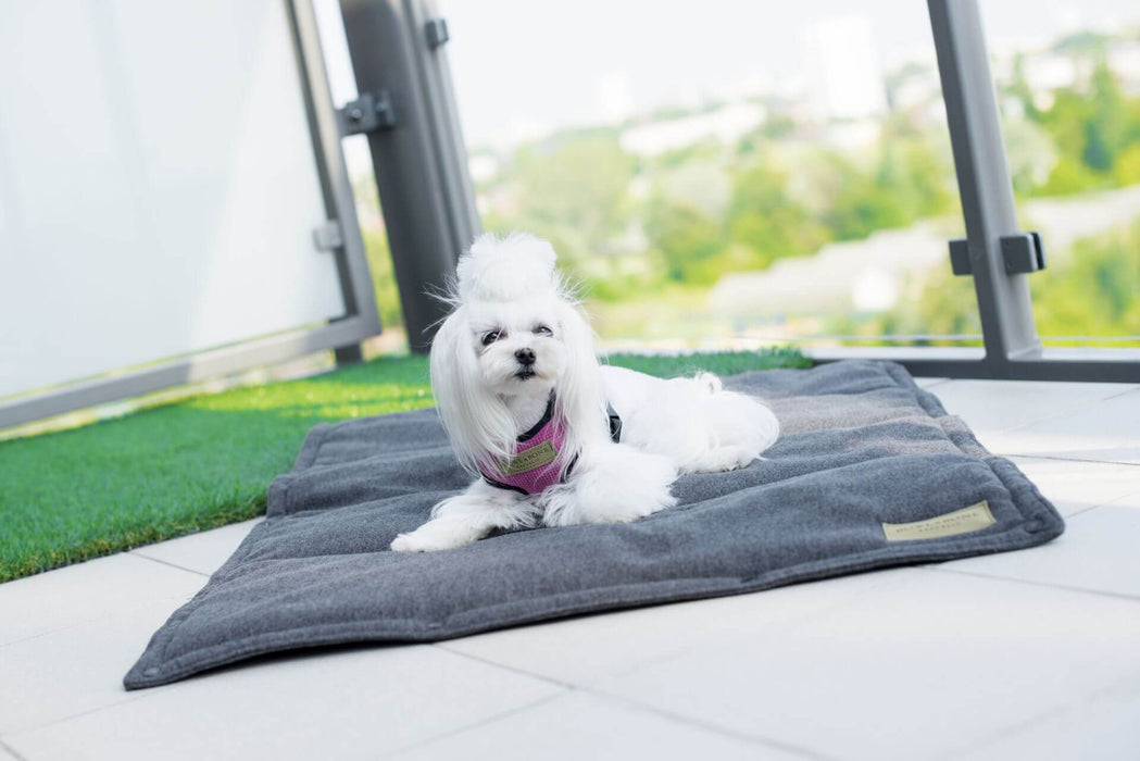Dog Portable Mat Loft (Graphite)