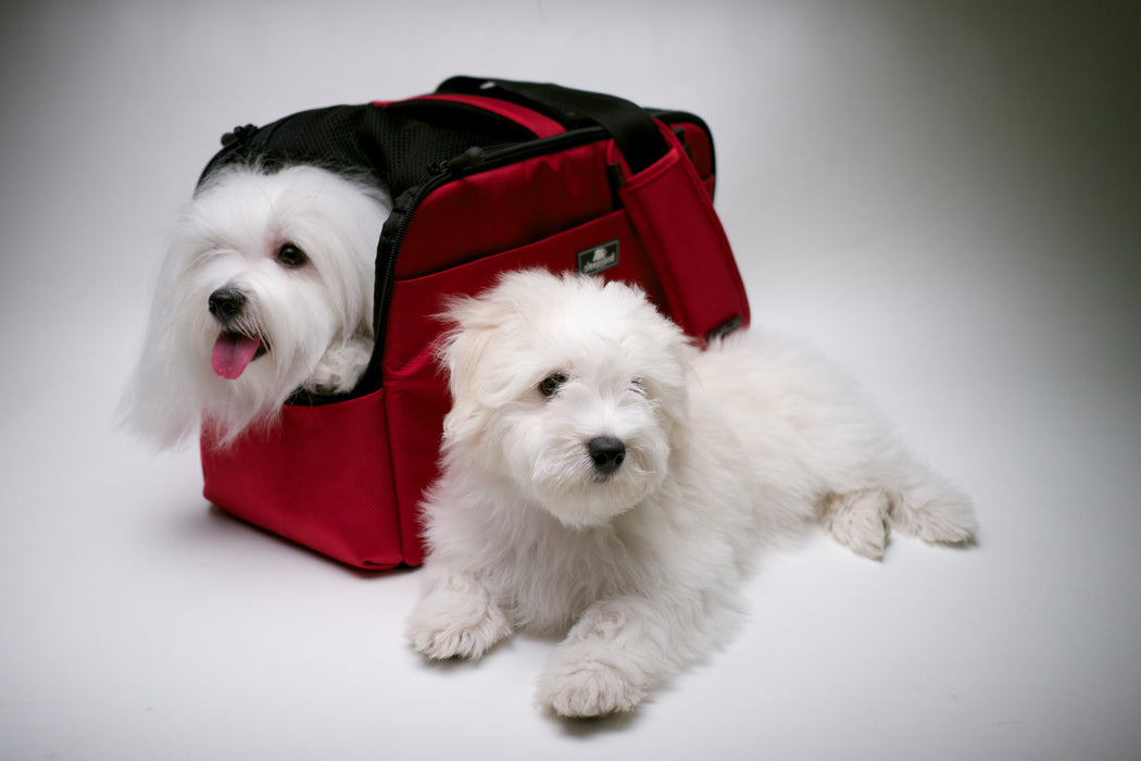 Sleepypod Atom Pet Carrier (Strawberry Red)