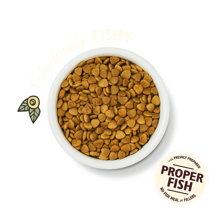 Adult Fabulous Fish & Healthy Herbs Dry Cat Food (800g)