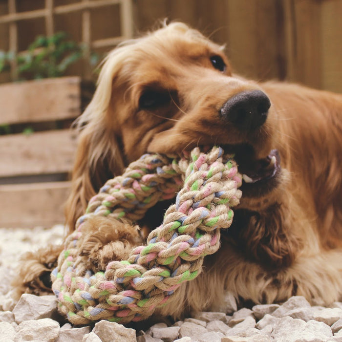 Hemp Rope Ring Dog Toy