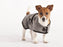 Wool Dog Coat (Grey)