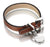 Royal Dog Collar (Red Brown)