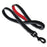Springback Dog Lead for Hiking and Running