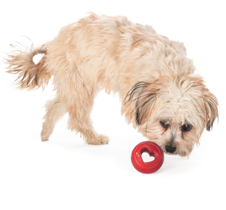 Orbee-Tuff® Nooks™ Dog Toy (Heart)