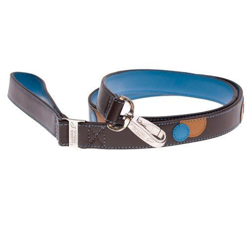 Monty Brown/Turquoise Dog Lead