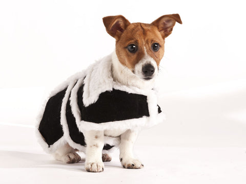 Sherpa Leather Dog Coat (Black)