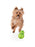 Orbee-Tuff® Diamond Double Plate Ball Dog Toy (Green)