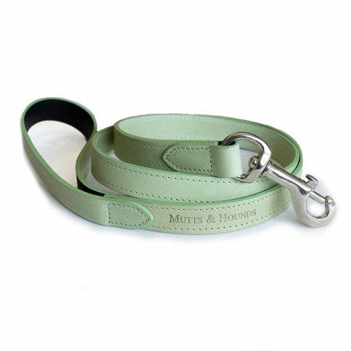 Leather Dog Lead (Sage)