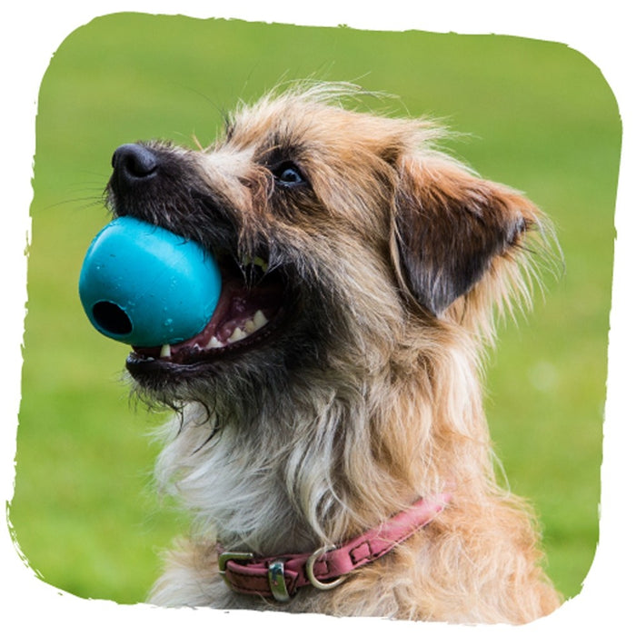Beco Rubber Ball dog toy (Blue)