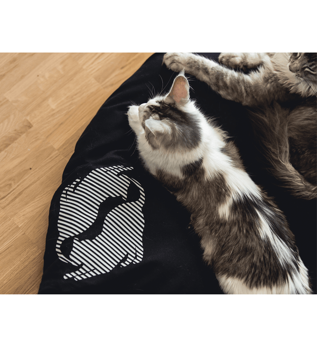 Emi Cat Bed (Black)