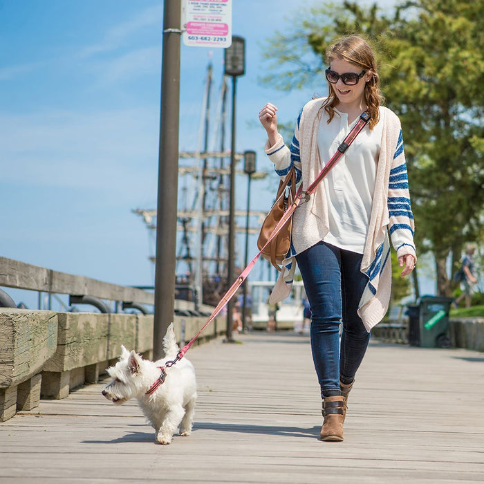 Quantum 6-in-1 Dog Lead