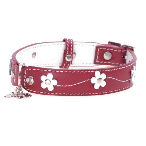 Lucy Red Dog Collar