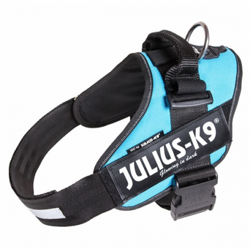 IDC® Power Harness (Turquoise Aquamarine)