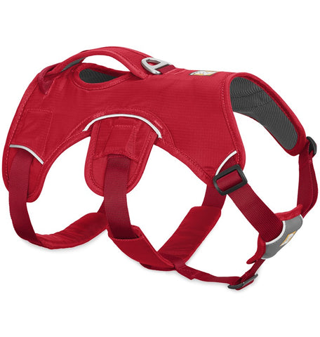 Web Master™ Dog Harness (Red Currant)