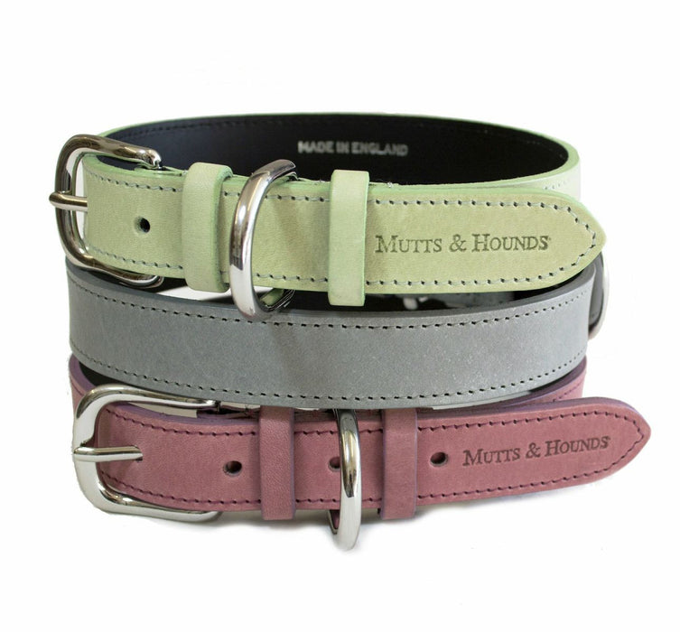 Leather Dog Collar (Sage)