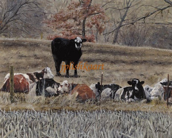 Watching You - Cow Art and More