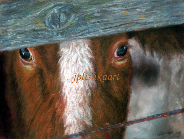 Sneak a Peek - Cow Art and More