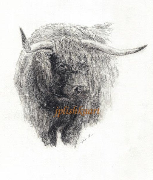 Highlander - Cow Art and More