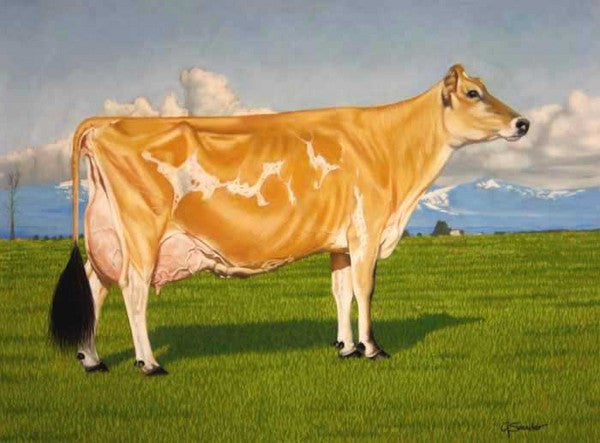 Pleasant Nook F Prize Circus - Cow Art and More
