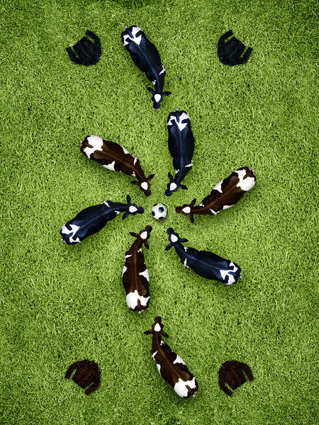 Soccer Cows - Cow Art and More