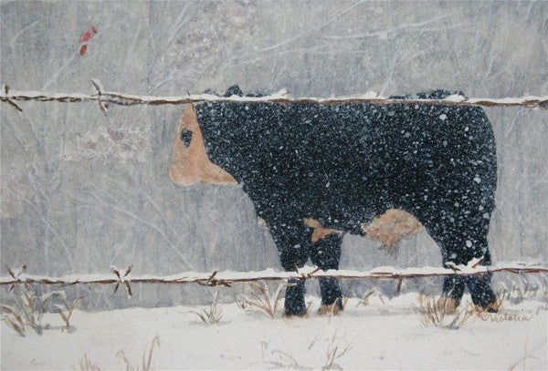Gentle Snow - Cow Art and More