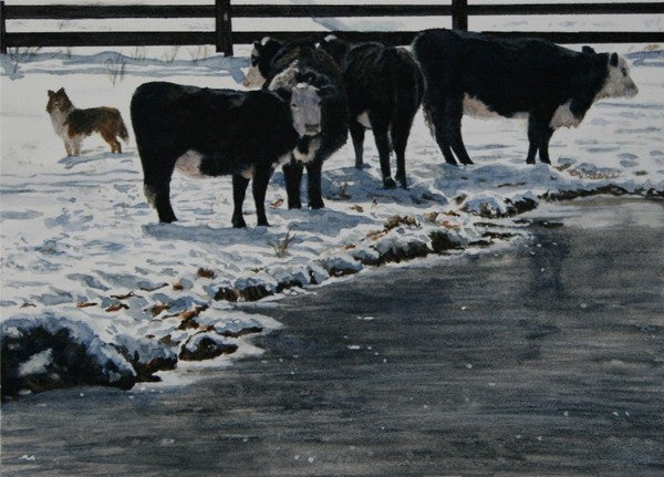 Winter's Edge - Cow Art and More