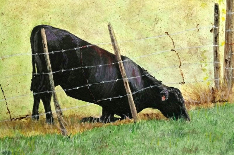 Greener Grass - Cow Art and More